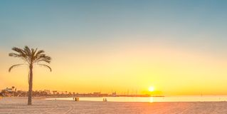 Barceloneta海滩在日出的巴塞罗那 免版税库存图片
