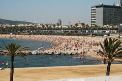 Barceloneta Stock Foto