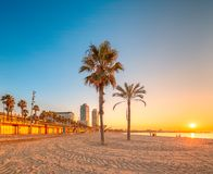 Barceloneta Beach in Barcelona at sunrise Stock Photography