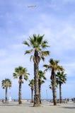 The Barceloneta beach in Barcelona Royalty Free Stock Photo