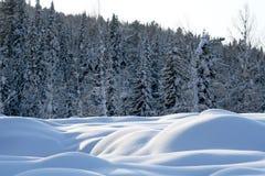 Barchans de neige Images libres de droits