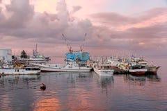 Barche al porto ad alba, isola di Viti Levu, Figi di Suva fotografia stock libera da diritti