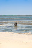 Barche a bassa marea Immagini Stock Libere da Diritti