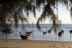 Barche dei pescatori attraverso un albero Fotografie Stock Libere da Diritti