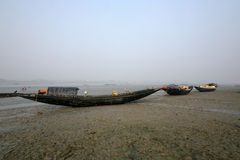 Barche dei pescatori incagliati nel fango a bassa marea sulla costa del golfo del bengala, India Fotografie Stock Libere da Diritti