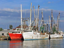 Barche del bacino della spugna Fotografie Stock