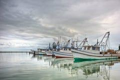Barche del gamberetto in una fila Fotografia Stock Libera da Diritti
