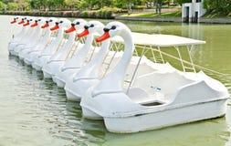 Barche del pedale dell'anatra Fotografia Stock Libera da Diritti