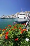 Barche e fiori nel porticciolo di Puerto Banus Fotografie Stock Libere da Diritti