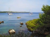 Barche e pini di Iles de Lerins Immagini Stock