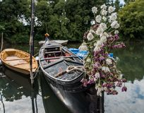 Barche Gondole Venezia Royaltyfria Bilder
