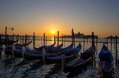 Barche Gondole Venezia stock foto