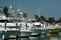 Barche messe in bacino fotografie stock libere da diritti