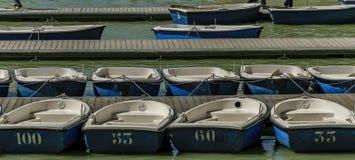 Barche a remi nel pilastro numerato pronto ad affittare immagine stock libera da diritti