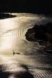 Barche sul fiume della Moldava durante il rappresentante tramonto-ceco Immagine Stock Libera da Diritti