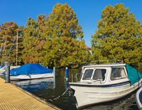 Barche sul lago Zurigo Immagine Stock