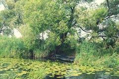 Barche sulla riva del fiume di Havel l'annata ritocca dell'immagine Fotografie Stock