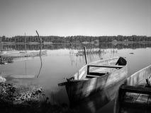 Barche tipiche di Pateira de Fermentelos Fotografie Stock Libere da Diritti