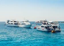 Barche a vela con il mare dei turisti in rosso vicino alla costa di Sharm el-Sheikh, Egitto fotografie stock libere da diritti
