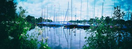 Barche a vela di panorama nel lago Alster a Amburgo con gli alberi immagini stock