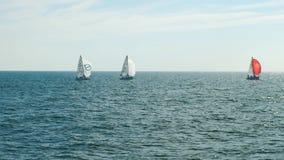 Barche a vela in mare con l'orizzonte stock footage