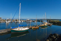 Barche a vela nel porticciolo Fotografie Stock