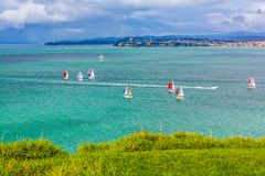 Barche a vela nel porto, Devonport, Auckland, Nuova Zelanda fotografia stock libera da diritti