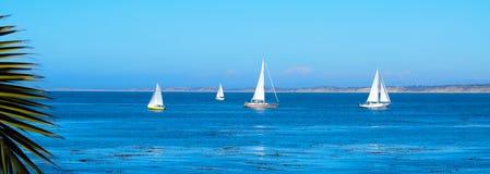 Barche a vela nella baia di Monterey Immagini Stock Libere da Diritti