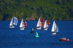 Barche a vela nella baia, Plymouth, Regno Unito Fotografia Stock