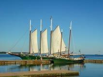 Barche a vela sul bacino fotografia stock libera da diritti
