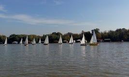 Barche a vela sul fiume Sava Immagine Stock