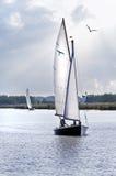 Barche a vela sul lago Immagini Stock