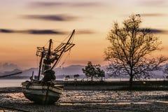 Barco, árvore e céu Fotos de Stock Royalty Free