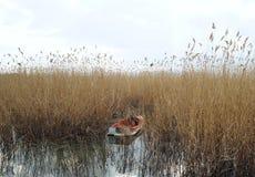 Barco amarrado en el lago Ohrid Foto de archivo