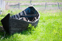 Barco arborizado velho na costa Fotos de Stock