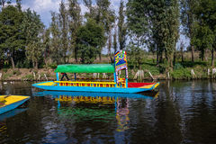 Barco colorido igualmente conhecido como o trajinera em jardins de flutuação de Xochimilcos - Cidade do México, México Imagens de Stock Royalty Free