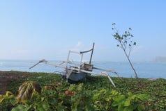 Barco com a árvore na praia Fotografia de Stock Royalty Free