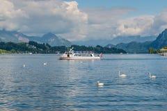 Barco da excursão e cisnes na frente das montanhas cobertos de neve dos cumes Imagens de Stock