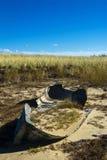 Barco de fileira abandonado Fotografia de Stock