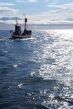 Barco de Islândia Fotos de Stock