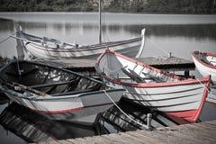 Barco de madeira de flutuação com pás Imagem de Stock Royalty Free