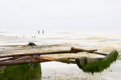 Barco de madeira no Oceano Índico fora da ilha de Zanzibar Unguja Foto de Stock Royalty Free