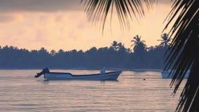 Barco de motor de la salida del sol y de la velocidad en agua de mar del Caribe Rep?blica Dominicana almacen de video