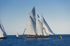 Barco de navigação antigo durante uma regata no clássico Yac de Panerai Imagens de Stock Royalty Free