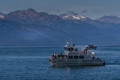 Barco de observación de la ballena imagen de archivo