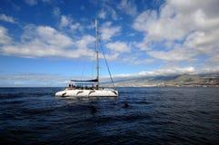 Barco de observação da baleia Imagem de Stock