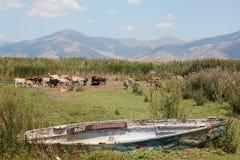 Barco de pesca abandonado en el lago Florina Grecia septentrional Prespes Imágenes de archivo libres de regalías