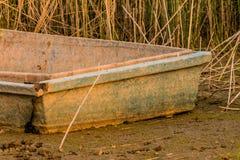 Barco de pesca abandonado que se sienta en cañas altas Fotografía de archivo libre de regalías