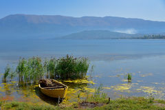 Barco de pesca amarrado nos juncos Fotos de Stock