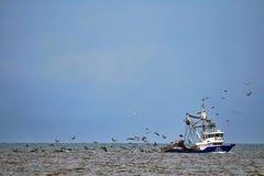 Barco de pesca com pássaros Imagens de Stock Royalty Free